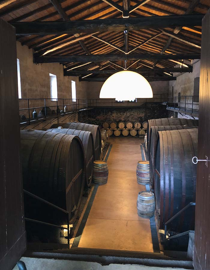 Wine cellar on Etna