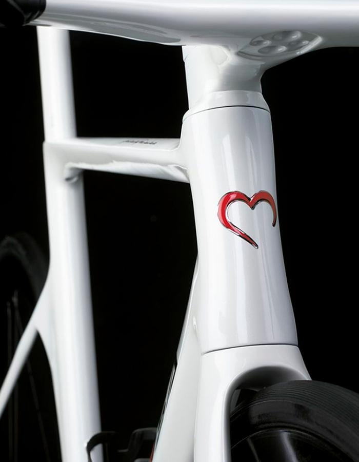 De Rosa head tube detail - Racing bikes of 2021